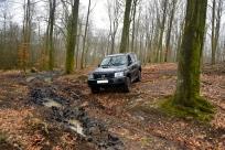 Skogsterräng och lera