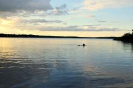 Harald simmar