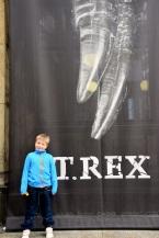 T-rex Tristan