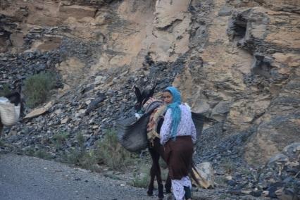 berber1