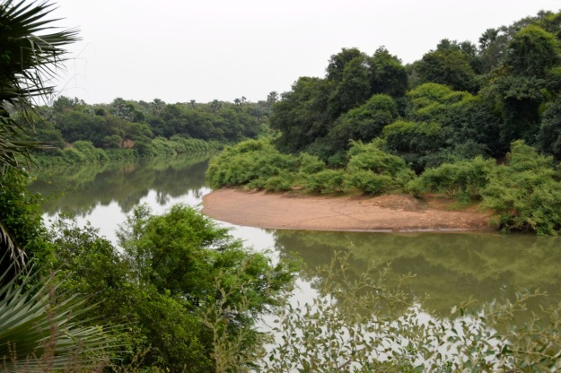gambiafloden