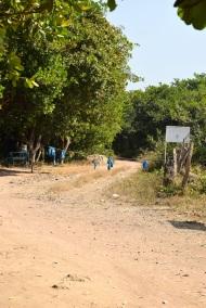Här stämplade vi ut och körde ut ur Guinea.