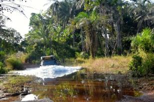 vattenpassage-guineas-regnskog