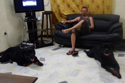 Dan med hundarna Boris och Rolex