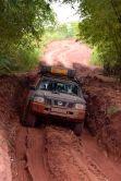 Nisse i leran