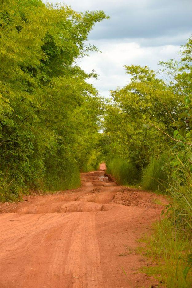 Vacker väg genom Kongo