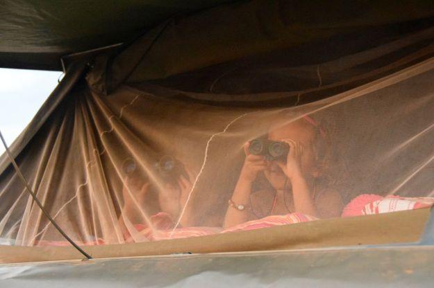 barnen med kikare i tältet