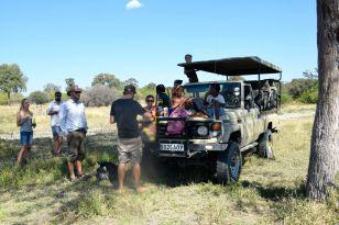 safaribilen