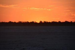 solnedgången panen